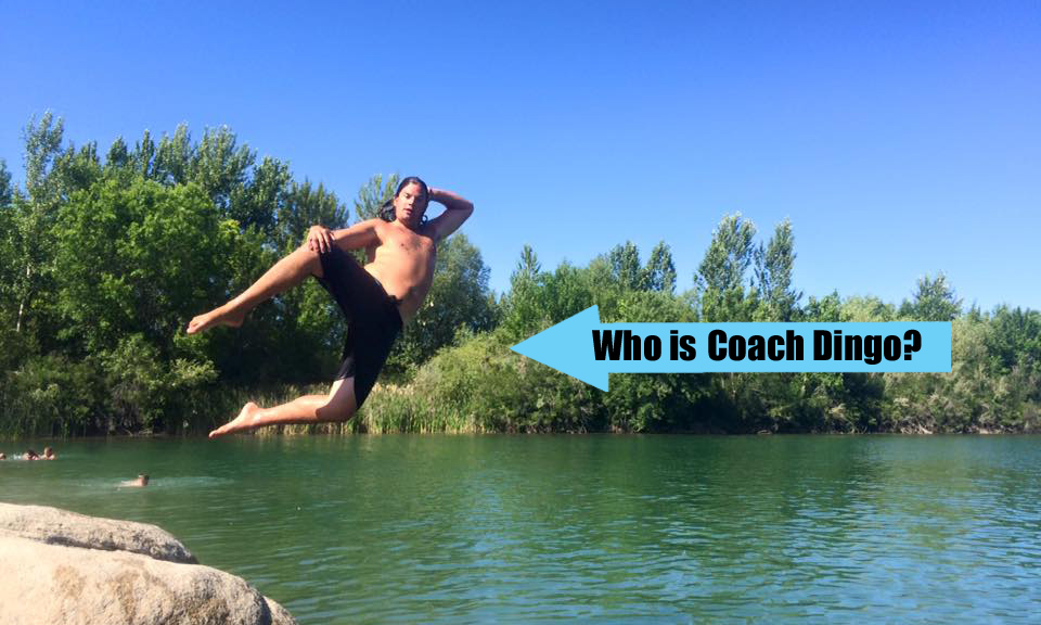 Who is Coach Dingo?